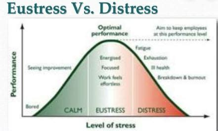 Difference Between Distress AND Eustress   Read Biology